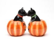 Magnetic Salt and Pepper Shaker - Black Cat Pumpkins