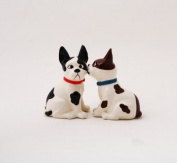Funny Mutts Attractives Salt Pepper Shaker Made of Ceramic