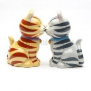 Hand Painted Ceramic Magnetic Salt and Pepper Shaker Set- Tabby Kittens