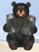 """""""Beary Seasoned"""" Bear Salt and Pepper Shaker Set"""