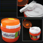 INSULATED FOOD JAR THERMO HOT COLD FOOD LUNCH BAG CONTAINER BOWL SPOON FORK 300ml