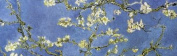 Vincent Van Gogh Almond Blossoms Flowering Tree Floral Fine Art 30.5cm x 91.4cm Poster Print