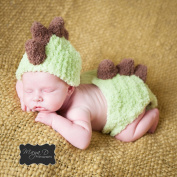 Melondipity Baby Boy Dinosaur Hat and Nappy Cover Set - Newborn Size - Handmade in the USA - High Quality Yarn - Great Baby Shower Gift Idea