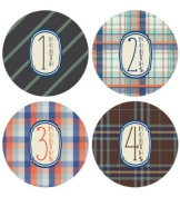 Lucy Darling Shop Baby Monthly Onesie Sticker - Baby Boy - Plaid Design - Months 1-12