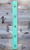 Wooden Ruler Growth Chart - Robin's Egg Blue