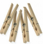 Honey-Can-Do Craft Sticks & Clothes Pins Wood Clothespins with Spring (200-Pack) Natural wood DRYZ01376