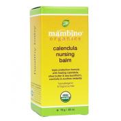Calendula Nursing Balm 20ml
