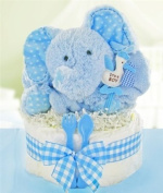 Gingham & Giggles One Tier Nappy Cake-boy