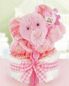 Gingham & Giggles One Tier Nappy Cake-girl
