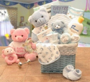 Gift Baskets Associates Baby Gift the Sweet Baby of Mine New Baby Basket Girl