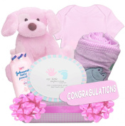 "Baby Bundles, Baby Girl Deluxe ""All Organic"" Gift Basket with Pink Gingham Nappy Caddy, Pink"