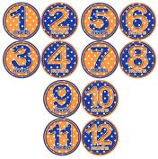 ORANGE BLUE POLKA DOTS Baby Month Onesie Stickers Baby Shower Gift Photo Shower Stickers, baby shower gift by OnesieStickers