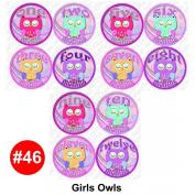 GIRLS OWLS Baby Month Onesie Stickers Baby Shower Gift Photo Shower Stickers, baby shower gift by OnesieStickers