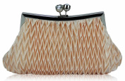 Womens Nude Clip Top Woven Style Clutch Evening Bag Purse