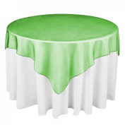 152.4cm . Square Organza Overlay Valley Green