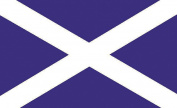 Scotland St Andrew Cross Flag [Kitchen & Home]