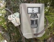 Security Box for Bushnell Trophy Cam