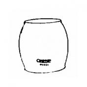 Coleman R690B051 Glass Lantern Globe-CLEAR LANTERN GLOBE