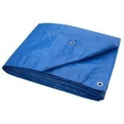 BLUE TARP 20 X 30 LIGHT DUTY