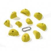 Nicros HBF Jugs Lions Handholds - Yellow