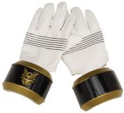 Power Rangers Deluxe Hand Gear