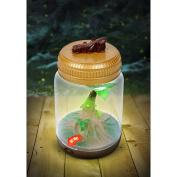 Backyard Safari Firefly and Critter Jar