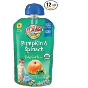 Earth's Best Organic Pumpkin & Spinach Baby Food Puree - 3.5 oz.