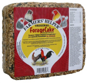 C & S Products Original Forage Cake, 6-Piece