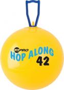 Champion Sports Fitpro 42 cm Hop Along Pon Pon Ball