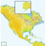 C-MAP MAX NA-M026 - Great Lakes & The Maritimes - SD-Card