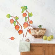 [Happy Hours] Decorative Wall Stickers Appliques Decals Wall Decor Home Decor