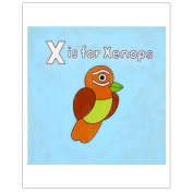Matthew Porter Art Wall Decor Art Print, X is for Xenops