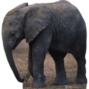 Advanced Graphics 224 Elephant Life-Size Cardboard Stand-Up