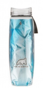 Polar Ergo Insulated Water Bottle