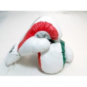 Mexico - 180ml boxing Gloves Sport Fitness Training