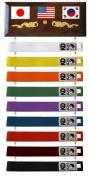 Ten Level Belt Display