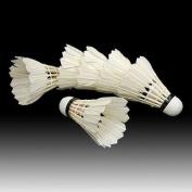 6PCS White Feather Shuttlecocks Badminton
