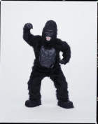 Costumes For All Occasions Cm69009 Gorilla Mascot Complete