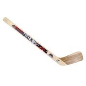 Rockford IceHogs Hockey Foward Wooden Ministick