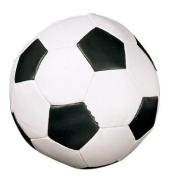 Champion Sports 20.3cm Soft Sport Soccer Ball
