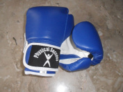 Kids Boxing Gloves Blue 60ml
