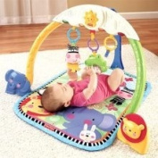 Fisher-Price Discover and Grow Tracking Lights Musical Gym