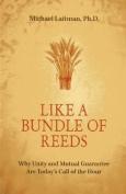 Like A Bundle Of Reeds*************