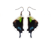 Real Butterfly Wing Earrings - Graphium Weiskei Bottom Wing