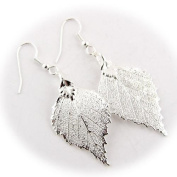 Silver Plated Birch Real Leaf Earrings
