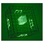 Danielson Fold-Up Square Crab Trap