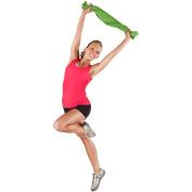 Gold's Gym DIY Workout DVD Kit