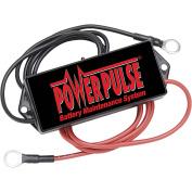 PulseTech PowerPulse 48 Volt 735X048 PP-48-L