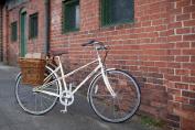 Nantucket Bike Basket Company Cisco Collection Pannier Basket with Hooks
