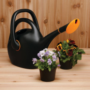 Fiskars Easy-Pour 9.8l Watering Can